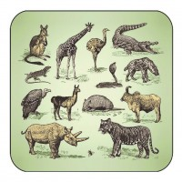 Savannah Animal Coaster