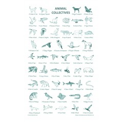 Animal Collective Tea Towel