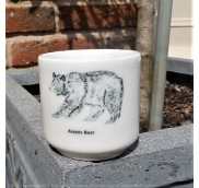 Bear Egg Cup - Asiatic Bear