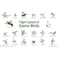 Flight Speed of Game Birds Tea Towel