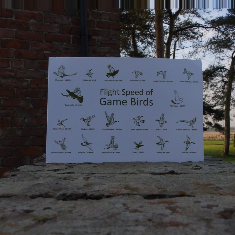 Greetings Card - Flight Speed of Game Birds