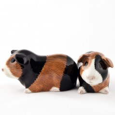 Guinea Pig Salt and Pepper