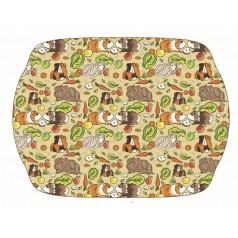 Guinea Pig Tray - large