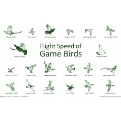 Flight Speed of Game Birds Placemat