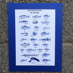 Fishing Records Print