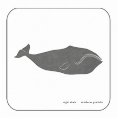 Whale Coaster - Right Whale